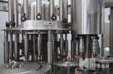 Terminar la cadena de producción pura del agua