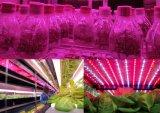 360 도 놀 각 12W LED는 전구를 증가한다