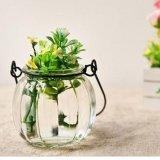 Bello vaso di fiore di vetro trasparente di cristallo all'ingrosso per la decorazione domestica