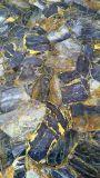 Eenvoudig om Lijn van de Uitdrijving van het Blad van pvc van de Extruder te behandelen de Kunstmatige Marmeren