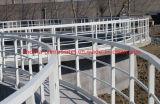 Corrimano/profili della vetroresina Railing/GRP