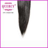 A melhor qualidade nenhum cabelo humano indiano do Virgin de Remy da onda reta da natureza dos piolhos
