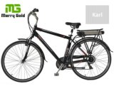 強いフレーム250Wのハブモーター熱い販売の安い価格電気都市バイク