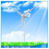Do vento horizontal da turbina da linha central do controlo automático de três lâminas luz de rua híbrida solar
