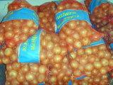 Neues Getreide-frische gelbe Zwiebel (5 cm und up)