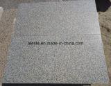 Granito color cioccolato caldo, mattonelle di pavimento del granito