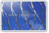 Barbelé-fil Fence (anjia-516) de la CE et de GV Marks Galvanized Razor