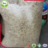 2016 gérmenes de calabaza blancos como la nieve sin procesar de las nuevas cosechas