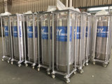 ASMEの溶接Heat Insulation Cryogenic Cylinder