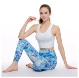Form-Yoga-lange Gamaschen-Frauen-Sport-lange Hosen-Eignung-Abnützung-reizvolle kurze Weste-Komprimierung-Gymnastik-Hosen