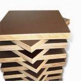 A película de Brown do núcleo do vidoeiro enfrentou a madeira compensada para o concreto
