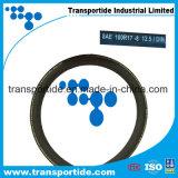 SAE 100r17 Transportideの油圧ホース