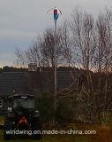 gerador de turbina vertical do vento 1000W com alta qualidade (200W-5kw)