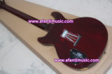 Fotorezeptoren reden an,/Mahagonikarosserie u. Stutzen,/Afanti elektrische Gitarre (APR-055)