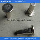 Lalike Ringlock Scaffolding Accessories, Sale를 위한 Galvanized Ringlock Scaffolding System