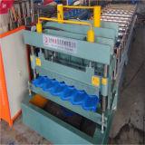 La vendita calda 1100 di Dx ha lustrato il rullo delle mattonelle che forma la macchina