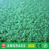 Gioco del calcio Playground Grass e Synthetic Turf (AC2-12PA)