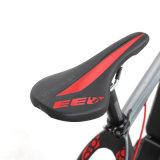 Vélo de montagne électrique de Jobo outre de route avec ultra le système 1000W Jb-Tda33L
