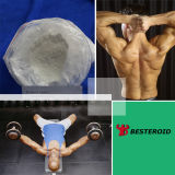Quality 높은 Steroid Powder 4 Androstenedione (CAS 63-05-8)