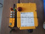 Grue industrielle générale F24-6D à télécommande sans fil
