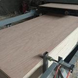 Contre-plaqué de bois dur de pente de BB/CC pour des meubles