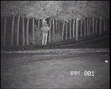 적외선 스캐너 속도 돔 사진기