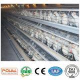 2017 jaulas automáticas llenas de la capa del pollo de la batería del nuevo diseño