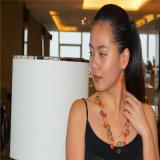 다채로운 Multilayers 및 귀걸이 보석 세트를 가진 합금 목걸이는 구슬로 장식한다