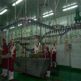 Оборудование Slaughtering цыплятины
