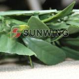 Травы изгороди высокого качества Sunwing циновка изгороди искусственной пластичной искусственная