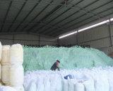 Qualitäts-Eisensulfat Monoahydrate Zufuhr