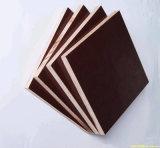 Rouge/noir/contre-plaqué Shuttering de Brown/contre-plaqué marin de toute la taille