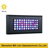 La mayoría de la luz popular del acuario del LED para el tanque del filón de los pescados