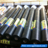 tissu tissé par pp agricole noir de lutte contre les mauvaises herbes de 3.5oz