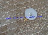 ナイジェリアの塗ることのための市場によって電流を通される鶏のネット