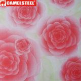 Camelsteel liefern herrliche Blumen-Muster-Entwurfs-Farben-Stahlblech