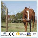 Fornitori elettrici della rete fissa di vendita del campo ad alta resistenza caldo del bestiame