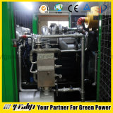 PCCE de gaz avec le pouvoir de l'électricité et le pouvoir chaud