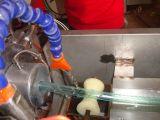 Linha macia da extrusão da mangueira flexível do PVC (LPGG)