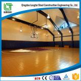 Het BinnenStadion van de Structuur van het staal