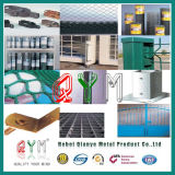 Competitive Price를 가진 Qym-Welded Wire Fence