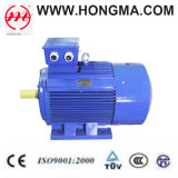 Ie2 Cast Iron Series Three Phase Asynchronous Induction High Efficiency Electric Motor (2HMI 250M 4 55)