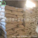 حارّ عمليّة بيع بروتين مسحوق أرزّ بروتين وجبة