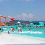 물 공원 장비 Tsunami 수영장