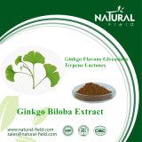 Гликозиды флавона Ginkgo выдержки Biloba Ginkgo, выдержка завода лактонов терпена