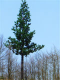 工場によってカスタマイズされるQ235穏やかな鋼管コミュニケーションBionic木タワー