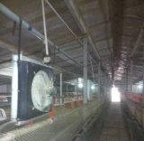 Casa de galinha comercial/camadas das gaiolas/a casa grelha da galinha