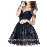 女性の恋人の背部が開いた玉が付くレースのイブニング・ドレスのプロムの服