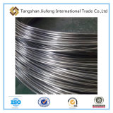 SAE1006/1008 alambre de acero laminado en caliente de alta resistencia Rod