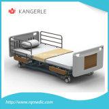 ISO/Ce 오래된 웅대한 홈. 헬스케어 중심 침대